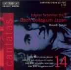 Cantatas Vol.14