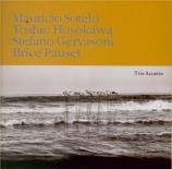 HOSOKAWA - Trio Accanto - Vertical time study II