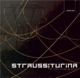 STRAUSS - Lyric Piano Qua - Quatuor avec piano en do mineur op.13