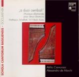 A duoi cembali (musique allemande pour 2 clavecins)