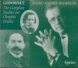 The Complete Studies on Chopin's Etudes