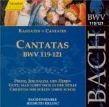 Cantatas Vol.38
