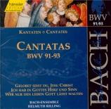 Cantatas Vol.29