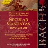 Secular Cantatas Vol.62
