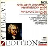 BACH - Linde - Cantate BWV 201 'Geschwinde, geschwinde, ihr wirbel