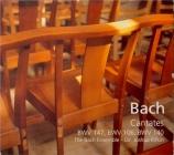 BACH - Rifkin - Herz und Mund und Tat und Leben, cantate pour solistes
