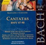 Cantatas Vol.28