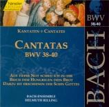 Cantatas Vol.13