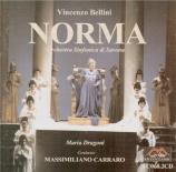 BELLINI - Carraro - Norma