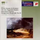 LISZT - Rosen - Sonate en si mineur, pour piano S.178