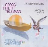 TELEMANN - Krcek - Concerto pour flûte à bec et flûte traversière, corde