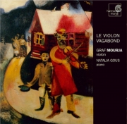 Le violon vagabond