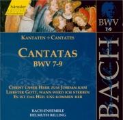 Cantatas Vol.3
