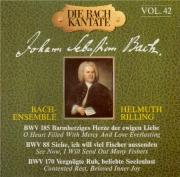Cantatas Vol.42