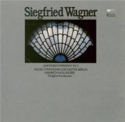 WAGNER - Hollreiser - Symphonie en ut