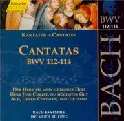 Cantatas Vol.36