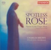 Spotless Rose : Hymnes à la Vierge Marie